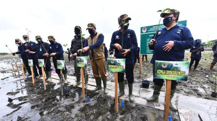 Tiga Desa di OKI Sambut Baik Program Padat Karya Penanaman Mangrove