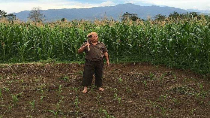 Mantan Kabareskrim Komjen Pol (Purn) Susno Duadji berada di lahan kebun miliknya di Kota Pagaralam.