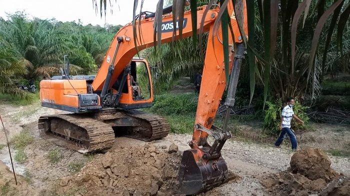 'Angkat Kaki dari Sini, Pohon Sawitnya Bawa Semua', Perusahaan Kuasai Tanah Ulayat 8.000 Hektar