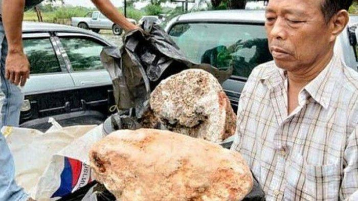 Nelayan Ini Mendadak Jadi Miliarder Seteah Temukan Batu Dari Muntahan Paus, Bahan Parfum Mahal