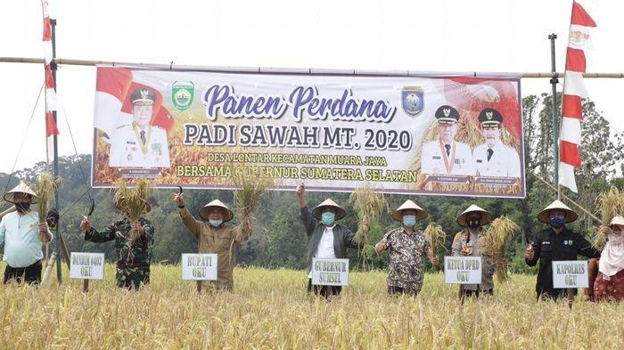 Herman Deru Dorong Kabupaten OKU Menjadi Daerah Lumbung Pangan di Sumsel, Bantu Bibit dan Alsintan