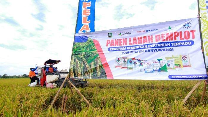 Ikut Memajukan Pertanian Nasional, Pupuk Indonesia Kembangkan Program Agro-Solution