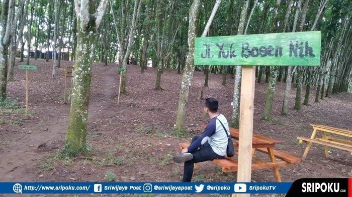 Maksud Kebun Karet Dalam Bahasa Malaysia