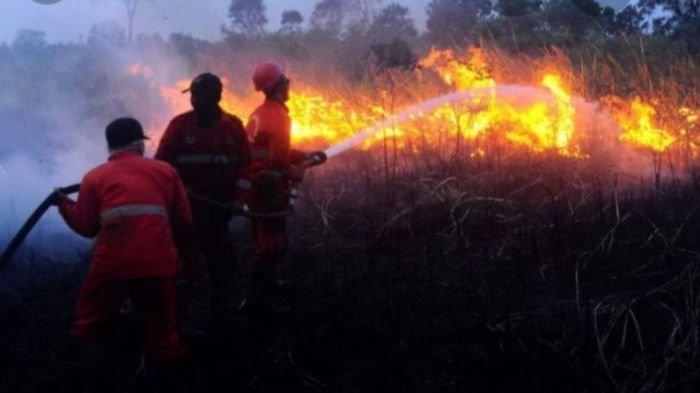 Lahan tak Berpenghuni Mulai Terbakar, Masyarakat Kabupaten Ogan Ilir & OKI Diimbau Waspada Karhutla