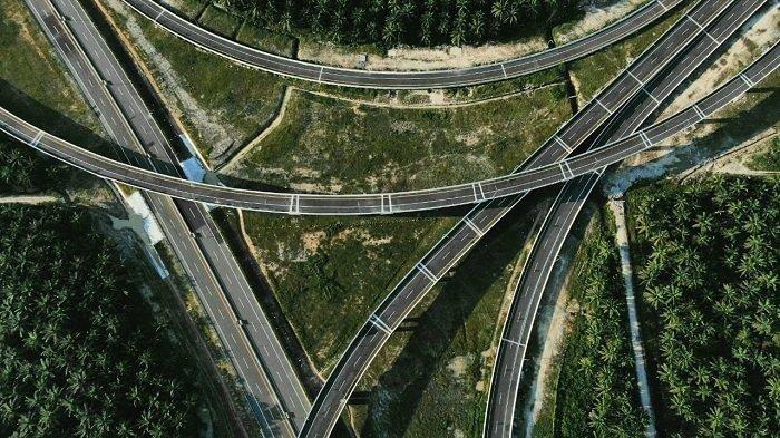 Melihat Keunikan Jalan Tol Pekanbaru-Dumai, Ada 5 Underpass Jalur Khusus untuk Perlintasan 100 Gajah