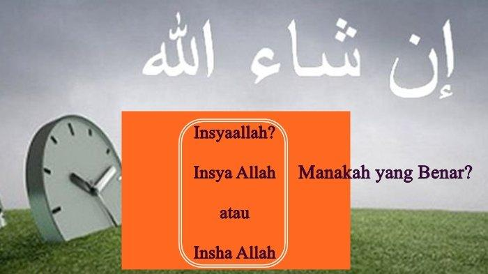 Cara Penulisan yang benar insyaallah, Insha Allah atau Insya Allah? berikut penjelasan dari ulama