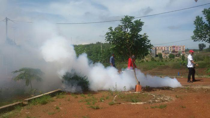 Penderita Penyakit Demam Berdarah Dengue Meningkat di Kota Palembang Terbanyak di Kecamatan Sukarami