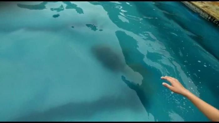 Paolo Maldini Bocah Tewas Tenggelam di Kolam Cha-Cha Water Fun Sekayu Sempat Divideo Temannya