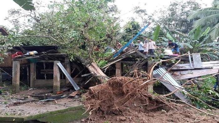 MUSIBAH JELANG BUKA PUASA di Muratara, Rumah Hancur Ditimpa Pohon, Yusdi Pingsan, Tubuhnya Terjepit