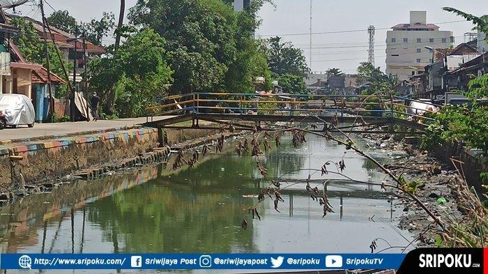 PENAMPAKAN Sungai Bendung Veteran Palembang saat Musim Kemarau, Bagian Tengah Kedalamnya Tiga Meter