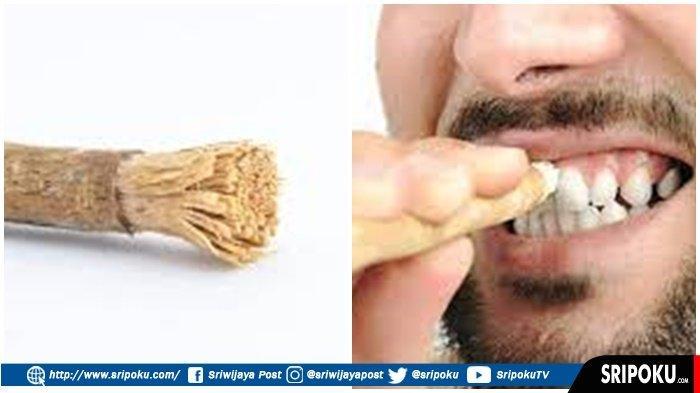 Apa Hukum Menggunakan Siwak Bagi Orang yang Berpuasa dan Penggunaan Pasta Gigi? Begini Penjelasannya