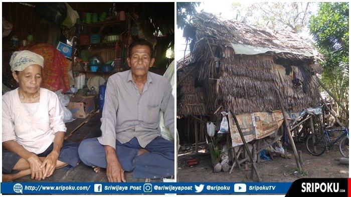 PENAMPAKAN Rumah Gubuk Pasutri di Pemulutan yang Sangat tak Layak Huni, 'Kami Tinggal Sama Ayam'