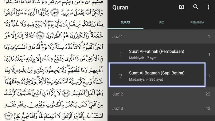 Bacaan Surat Al Baqarah Ayat 255 Lengkap Bahasa Arab Latin Arti Dahsyatnya Kekuatan Ayat Kursi Sriwijaya Post