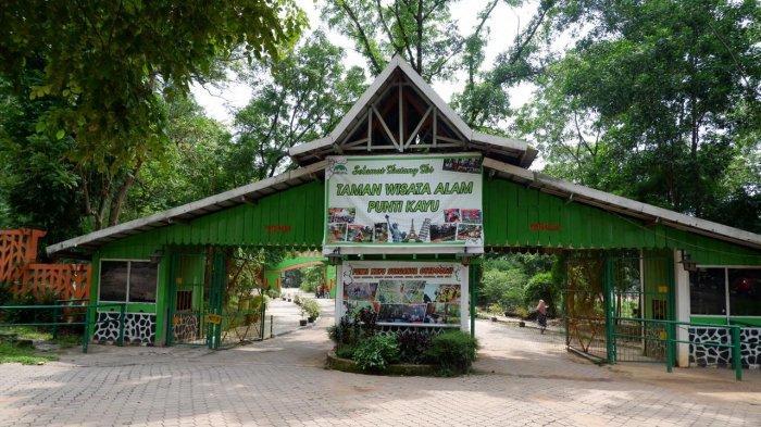 Taman Wisata Alam Punti Kayu Palembang, Berikut Ini Jadwal Operasional dan Harga Tiket Masuknya!