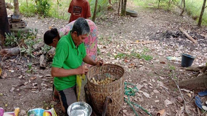 Saran untuk Para Petani di PALI Meningkatkan Hasil di Masa Pandemi Covid-19