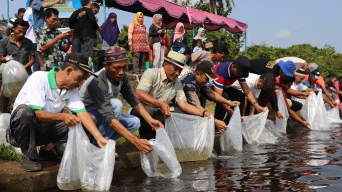 Ratusan Ribu Bibit Ikan Jelawat dan Nilem Ditebar di Danau Ulak Lia Sekayu