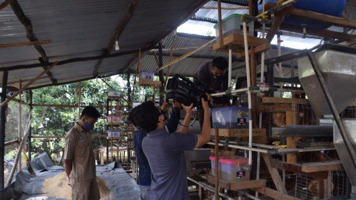 Tim liputan zona tani Televisi Republik Indonesia (TVRI) stasiun Sumatera Selatan, Palembang berkunjung ke SMK PP Negeri Sembawa untuk melaksanakan liputan tentang teaching factory (Tefa) yang ada di SMK PP Negeri Sembawa, Sabtu (20/11/2020)