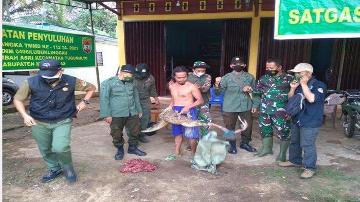 Update Buaya Hampir Terkam Anak Kecil di Musi Rawas, Begini Akhir Cerita Hewan Sepanjang 1,5 Meter