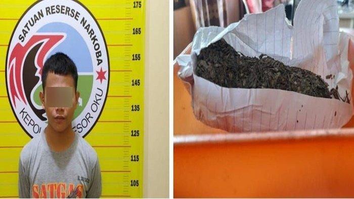 Tersangka pengedar narkoba MJ bersama daun ganja kering yang diamankan.