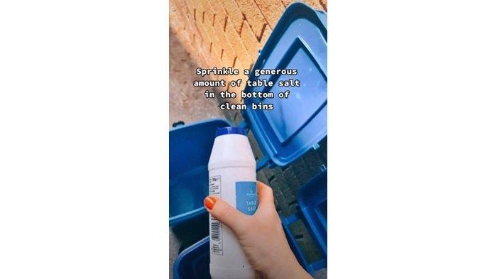 Saat menaburkan garam, @sisterpledgecleans menjelaskan jika garam memiliki manfaat menyerap cairan serta membunuh belatung yang memakannya.