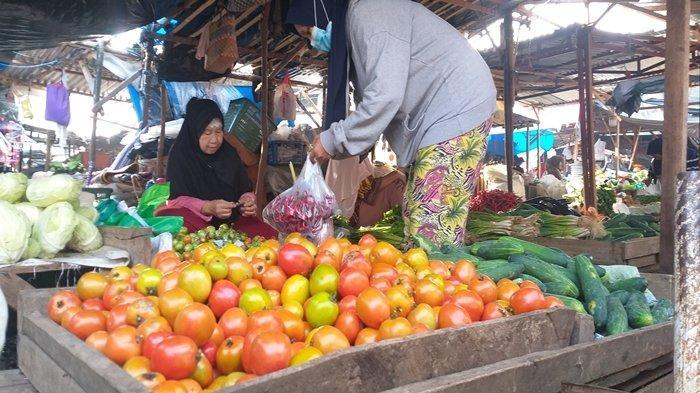 Harga Tomat di Pagaralam Tembus 12 Ribu, Kali Ini Petani Tak Bakal Buang Hasil Tanamannya ke Jalan