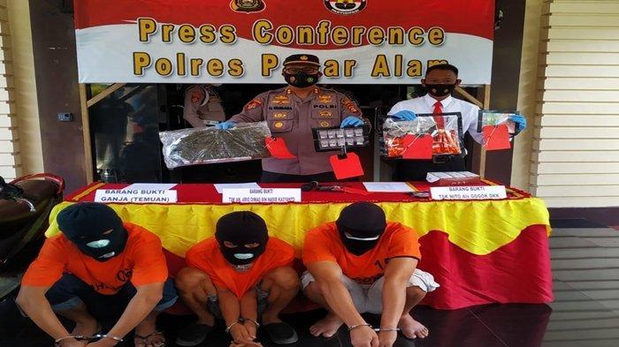 Pengedar Ganja di Pagaralam Diduga Jualan Via Jalur Online, Polisi Temukan Ganja di Tumpukan Kayu