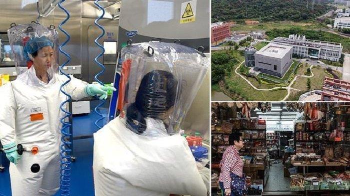 MENGEJUTKAN! ASAL Virus Corona Benar Dari Laboratorium Virologi Wuhan China: Sengaja Diternakkan