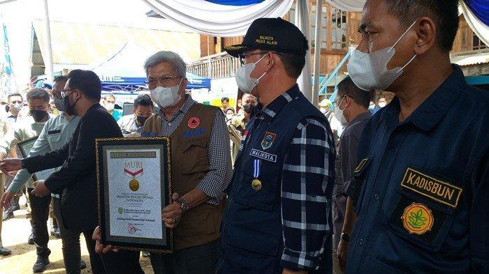 Program Sambung Pucuk Kopi di Pagaralam Dapat Rekor Muri, Mawardi Yahya: Hasil Panen Meningkat