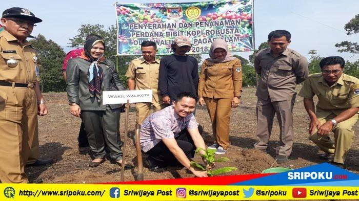 Berita Pagaralam: Ini Pesan Wawako Pagaralam untuk Petani Penerima Bantuan Bibit