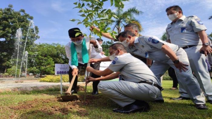 PT Jasa Raharja Wilayah Sumsel Donasikan 142 Pohon Tabebuya ke Pemkot Palembang