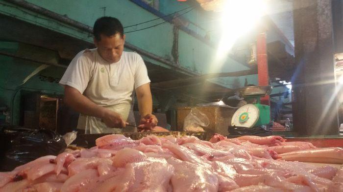 Tips Mudah dan Cepat Menghilangkan Bau Amis Pada Daging Ikan, Bisa Langsung Praktek di Rumah