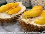 contoh-buah-durian-yang-akan-disajikan-pada-pesona-curug-tenang-durian-festival.jpg
