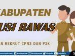 cpns-dan-pppk-2019-musirawas.jpg
