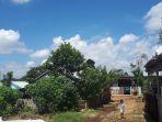 cuaca-pagaralam-cerah_20180613_131203.jpg