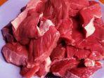 daging-sapi1.jpg