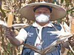 direktur-utama-pt-pusri-tri-wahyudi-menunjukan-jagung-hasil-panen.jpg