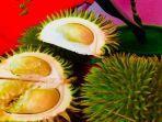 durian-hutan-khas-muba.jpg