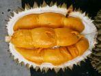 durian-kencono-rukmi_20171110_084711.jpg