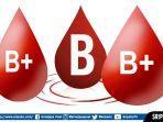 golongan-darah-b.jpg