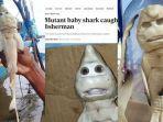hiu-berwajah-manusia-ditemukan-nelayan-indonesia-bikin-heboh-media-luar-negeri-hantu-casper-muncul.jpg