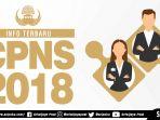 ilustrasi-info-cpns-terbaru-2018_20181022_095134.jpg