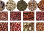 kacang-kacangan-biji-bijian_20150909_095234.jpg