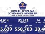 kasus-terpapar-covid-19-di-indonesia.jpg