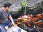ketua-komunitas-crystal-koi-farm-alex-wijaya-bangun_20170527_111410.jpg