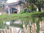 kolam-retensi-di-kawasan-jalan-sawit-i-perumahaan-bukit-sejahtera_20160803_152023.jpg