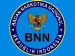 logo-bnn_20160817_074120.jpg