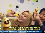 mainan-bebek-di-motor-yang-lagi-viral-di-indonesia.jpg