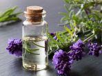 minyak-esensial-lavender.jpg