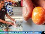 mutiara-oranye-yang-diyakini-sebagai-salah-satu-jenis-mutiara-termahal-dunia.jpg