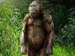 paranthropus-boisei_20171003_133418.jpg